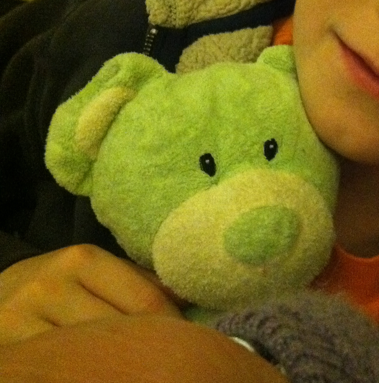 Green bear with long floppy arms and legs rattle inside - Green Bear is a soft spring green plush bear. He has a cream tummy and paws, with cream on his nose as well. He has long floppy green arms and legs, a tiny stubby green tail and a rattle inside his tummy. My son is inconsolable. He was left behind when we checked out of our rental home and although I have called the rental company, they said he was not found by the cleaning service. I would accept a replacement bear, and will pay a generous finders fee! Very generous! We are desperate. He is a good boy and I hate to see him so sad without his special friend.
