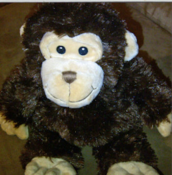 Macy&#8217;s First Impressions Brown Monkey with Cream Ears, Face, Hands, Feet - I&#8217;m searching for a 14 inch First Impressions brown plush monkey with cream ears, face, hands and feet, and stitched eyes and nose that has been discontinued from Macy&#8217;s (UPC #636206181139)