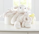 Pottery Barn Kids Lamb Thumbie with Knotted Corners - We are looking for a backup lambie.  My son cannot fall asleep without his Pottery Barn Kids Lamb Thumbie with knotted corners.  Any help on finding a new or gently used one would be greatly appreciated!