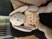 Koala Baby corded plush bunny from BRU - This bunny is from Koala Baby sold at babies r us 3 years ago. It's plush/corded a light beige with pink insides on her ears.   Bought our daughter this bunny for her 1st Easter and she's been in love since.