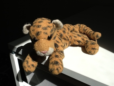 Please Help Find Missing Stuffed Leopard Toy