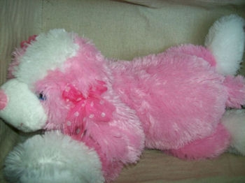 Animal Alley Small Pink And White Stuffed Dog With A Pink