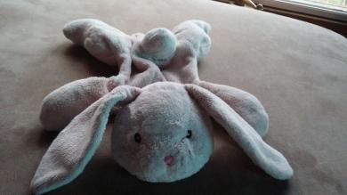 Floppy Pink Bunny
