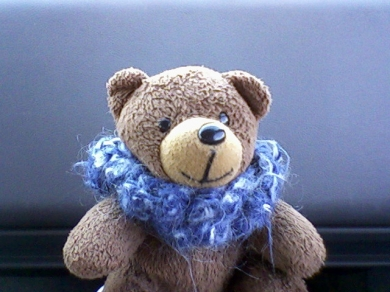 Small Brown Bear Probably Still With Blue Scarf