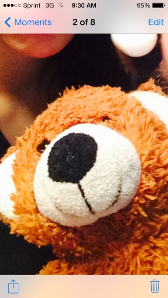 Brown Bear Aka Bubba Bear With Weighted Paws Plush Fur
