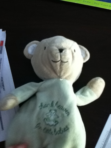 Teddy Bear With Light Green Body And Patch On Chest Thank