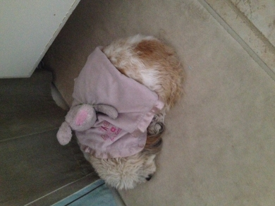 Bunny Blankie Lovey Pink Bunny With Ears And Arms And A