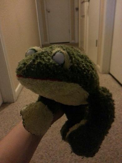Dark Green Frog