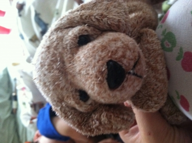 Brown Puppy With Embroidered Nose And Mouth And Bead Eyes