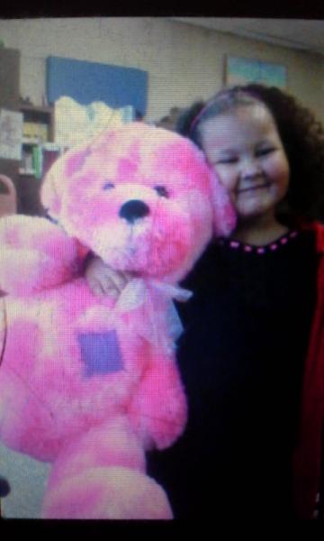 Large Hot Pink Bear