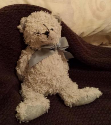 Ganz Snowflake Bear Answers To Teddy