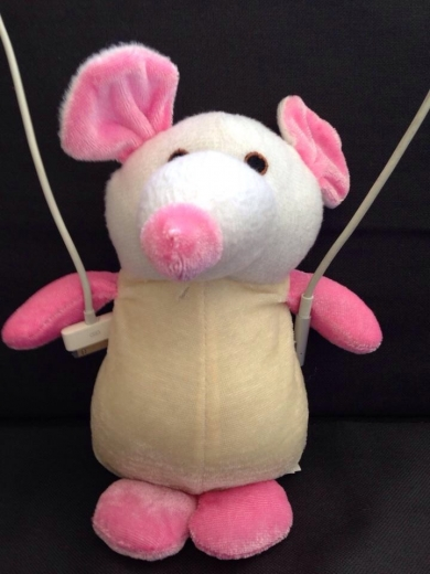 White And Pink Mouse Rat May Have Had Shirt