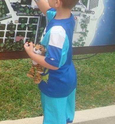 Orange Plush 8 Tiger