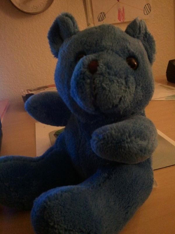 Blue bear with black eyes - Blue Teddy Bear with Black Eyes