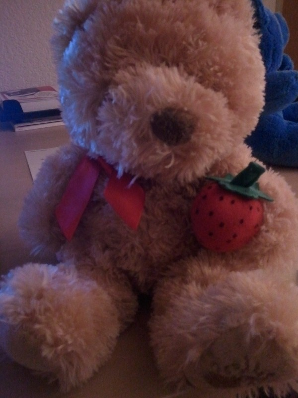 Tan teddy bear holding a Strawberry - Tan teddy bear holding a Strawberry, says