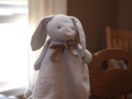 &#8220;Blankets and Beyond&#8221; Pink Bunny head and arms on a lovie. - Brand: Blankets and Beyond