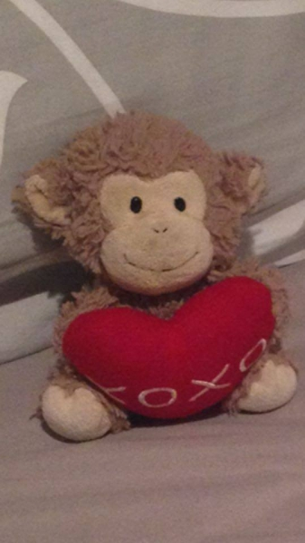 Small brown monkey with red heart
