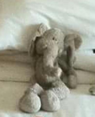 Lost Brown Teddy Bearblue Bear Ragged My First Bear