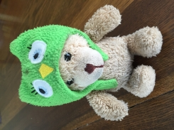 Teddy with green owl hat