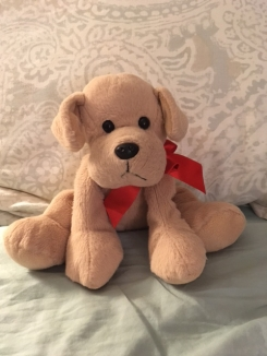 soft floppy dog with red bow