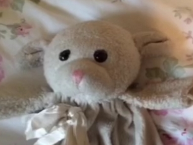 Stuffed lamb worn out with pink nose and long tail