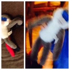 Hanging monkey with red tail & blue face