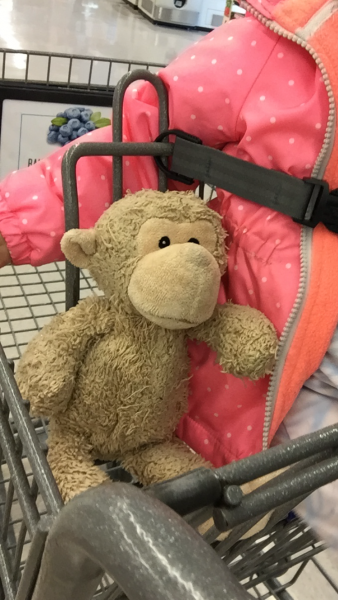 Lost Brown Bearkoala With Lime Green And Grey Blanketblue