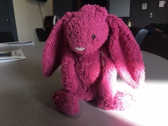 Pink/purple bunny with floppy ears jellycat