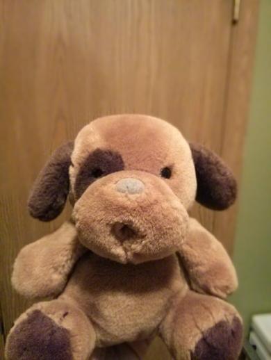 Searching For Gund Huggybuddy Weasley Tigerdog Teddy With
