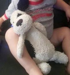 White puppy with black dot- bashful