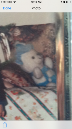 White teddy with blue hat and blue suspenders