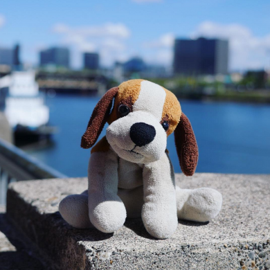 Little stuffed beagle dog - HAS BEEN FOUND!