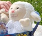 White Lamb with White Bow