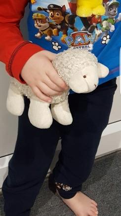 White soft lamb