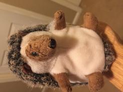 Stuffted hedgehog toy