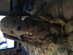 Dog teddy with farmyard pyjamas