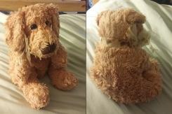 Caltoy Yellowy-Cream Puppy Dog