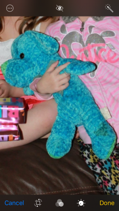 """""""Stuffy"""" was lost in a bus fire. My daughter had him since she was 3 years old, We nee"""