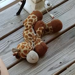 Well loved Ty giraffee