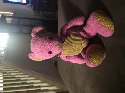 Pink bear orange corduroy belly
