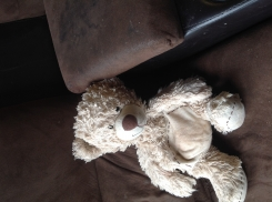 Stuffed bear with brown stitching