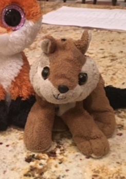 Chipmunk Beanie Baby…well loved.