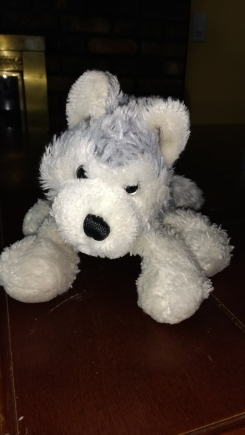 Grey and White Wolf Webkinz