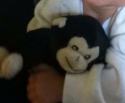 Small Seated Black Gorilla