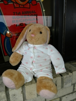 Tan Bunnie with Pj's