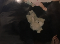 Cream/White Lamb with brown feet; from 1995 or later