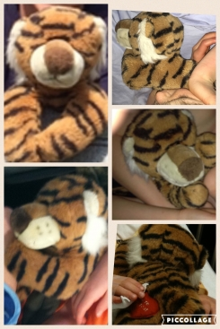 """Tiger with """"Love you"""" heart on back leg"""