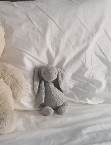 Jellycat small all gray bashful bunny (2 plus years old)