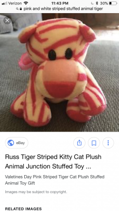 small pink and white striped tiger