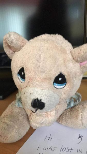Big eyed small bear